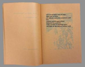 Umschauen-Seite1